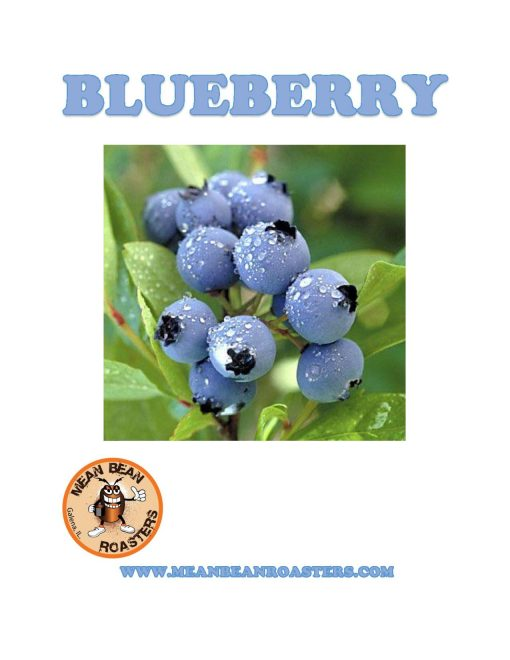 BLUEBERRY-page-001
